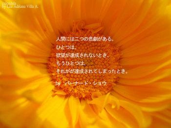 7dab4861_b.jpg