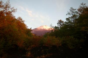 富士山と箱根神社-027.jpg