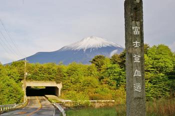 富士山と箱根神社-0288.jpg