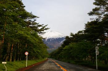 富士山と箱根神社-069.jpg