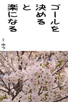 sonet-b-goalwo-kimeru02.jpg