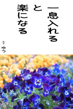 sonet-b-hitoiki-ireru02.jpg