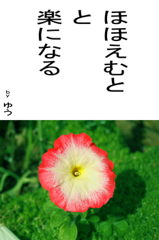 sonet-b-hohoemuto-02.jpg