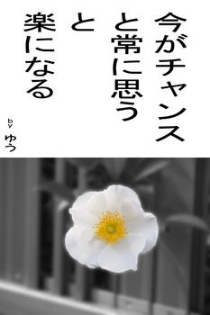 sonet-b-imagachance02.jpg