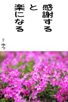 sonet-b-kansyasuru02.jpg