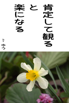 sonet-b-kouteisuru02.jpg
