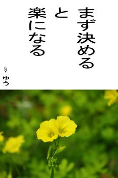 sonet-b-mazukimeru-02.jpg