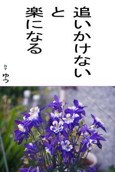sonet-b-oikakenai02.jpg