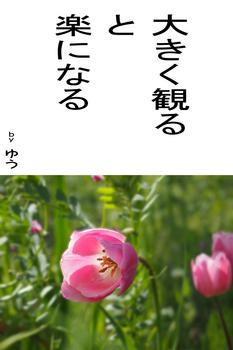 sonet-b-ookikumiru-02.jpg
