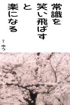 sonet-b-sakura01-640.jpg