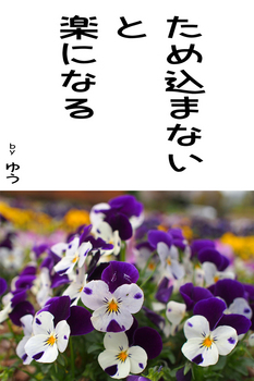 sonet-b-tamekomanaii02.jpg