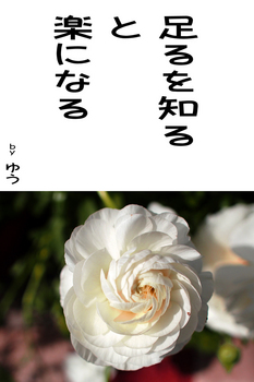 sonet-b-taru-wo-siru02.jpg