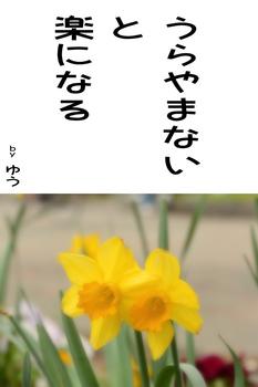 sonet-b-urayamanai02.jpg