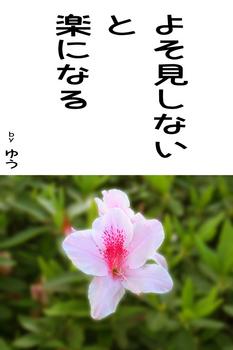 sonet-b-yosomisinai02.jpg
