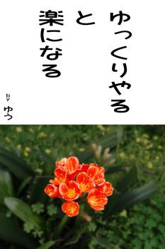 sonet-b-yukkuri-yaruu02.jpg