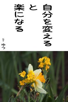 sonet-b-zibun-kaeru02.jpg